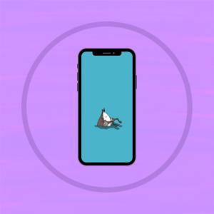 Desktop/Phone Wallpapers